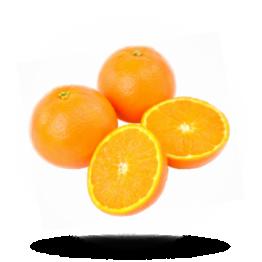 Pers sinaasappel LvO: SA